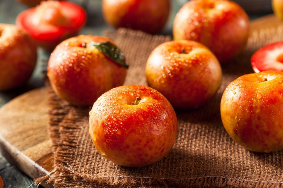 Try these 10 superfoods you've never heard ofRaw Organic Dinosaur Egg Pluots