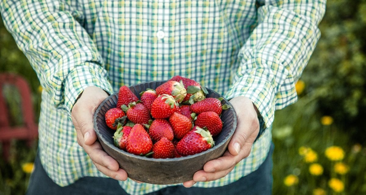 3 ways to indulge without expanding your waistline. Strawberries