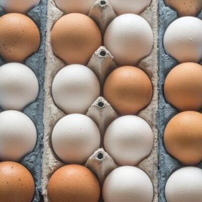 Nutrition Myths Debunked
