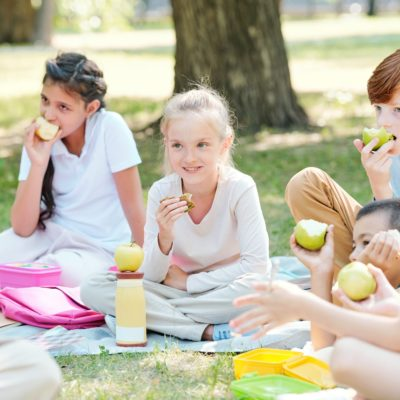 Group of kids eating apples at outdoor lesson