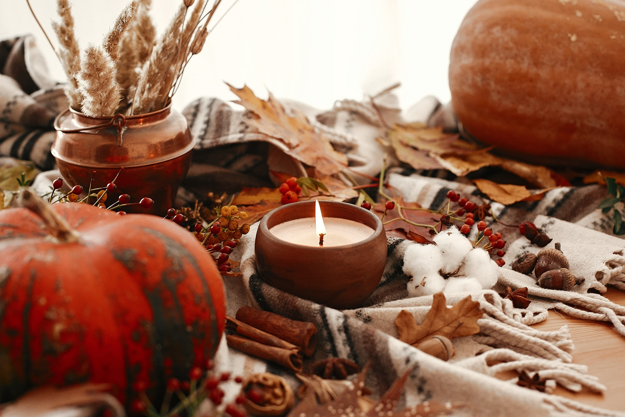 Pumpkin and candle with berries, fall leaves, anise,herbs, acorns, nuts, cinnamon, cotton